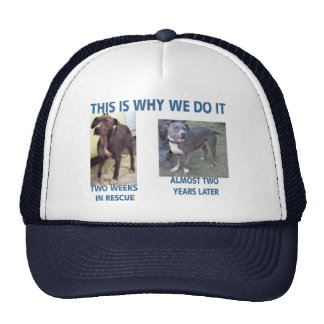 Why We Do It Cap Trucker Hat