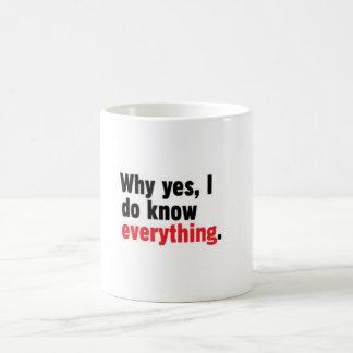 Why yes, I do know everything mug