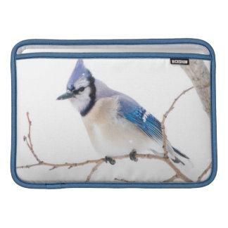 Wichita County, Texas. Blue Jay5 MacBook Air Sleeve