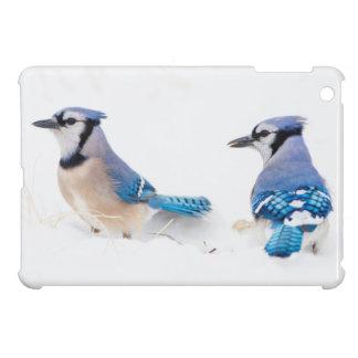 Wichita County, Texas. Blue Jay 2 iPad Mini Case