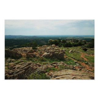 Wichita Mountains Vista with American Bison Poster