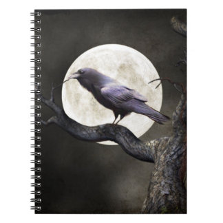 Wicked Raven Journal