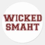 Wicked Smart (Smaht) College Boston Classic Round Sticker