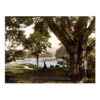 Wicklow Ireland, Thomas Moore Avoca poem Postcard