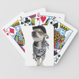 Wide-angle of a Chihuahua with his eyes closed Bicycle Playing Cards