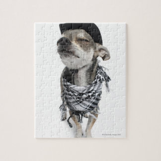 Wide-angle of a Chihuahua with his eyes closed Jigsaw Puzzle