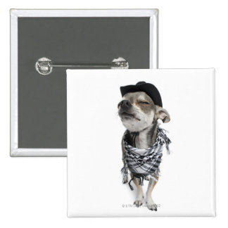 Wide-angle of a Chihuahua with his eyes closed Pinback Button