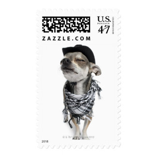 Wide-angle of a Chihuahua with his eyes closed Stamp