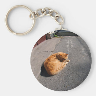 Wide angle view from the perspective distortion on basic round button keychain