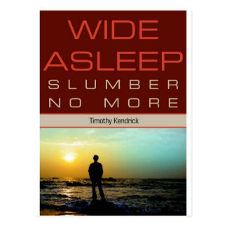 Wide Asleep Promotional Postcard