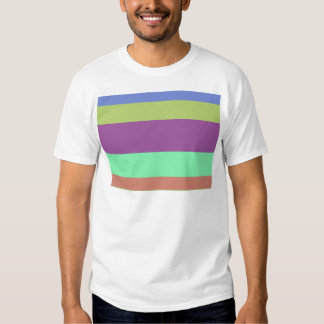Wide Color Stripes Tee Shirt