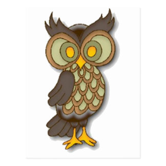 Wide Eyed Owl Post Card