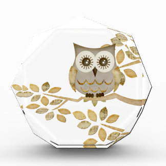 Wide Eyes Owl in Tree Acrylic Award