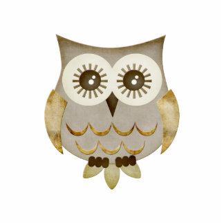 Wide Eyes Owl Photo Sculpture