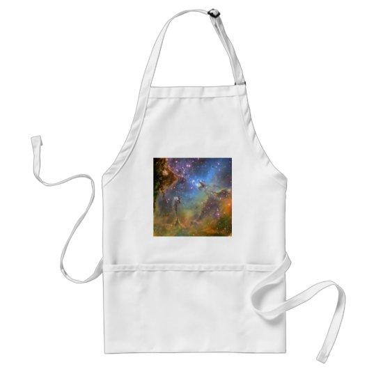 Wide-Field Image of the Eagle Nebula Adult Apron