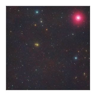 Wide Field View Constellation Cetus Stars Canvas Prints