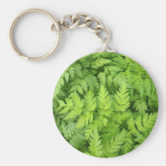 Wide green pinnate leaves closeup basic round button keychain
