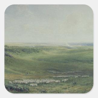 Wide Pastures, Sussex Square Sticker