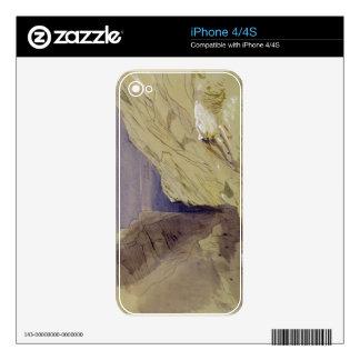 Wied Zurrik, Malta, 10 am, 11th March (w/c, pen, b iPhone 4 Decal