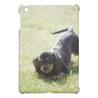 Wiener dog (black) 2 iPad mini covers