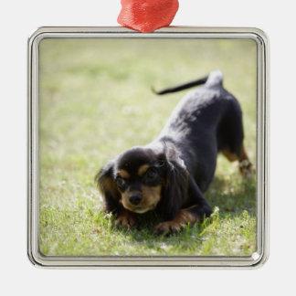 Wiener dog (black) metal ornament