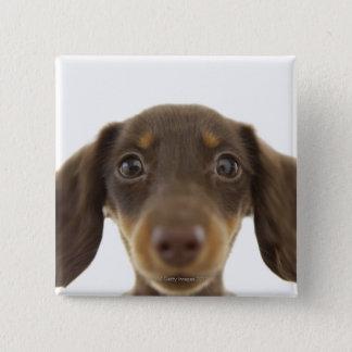Wiener Dog (brown) 2 Button