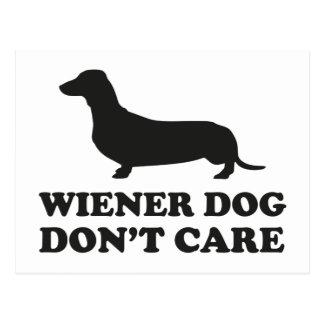 Wiener Dog Don't Care Postcard