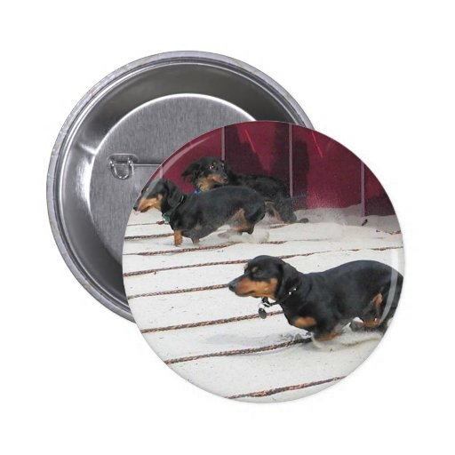 Wiener Dogs Races 2 Inch Round Button