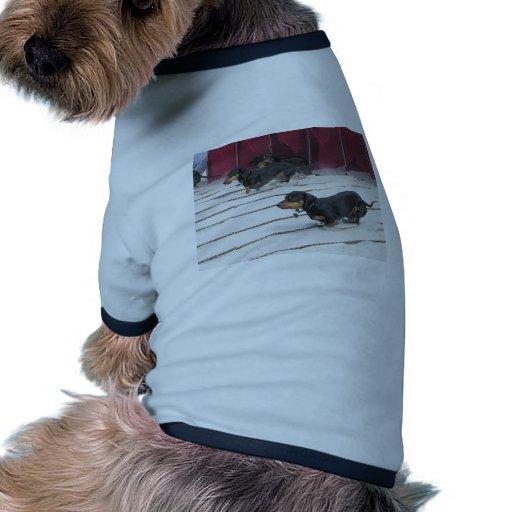 Wiener Dogs Races Pet T-shirt