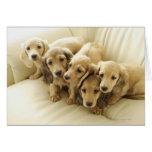Wiener puppies greeting card