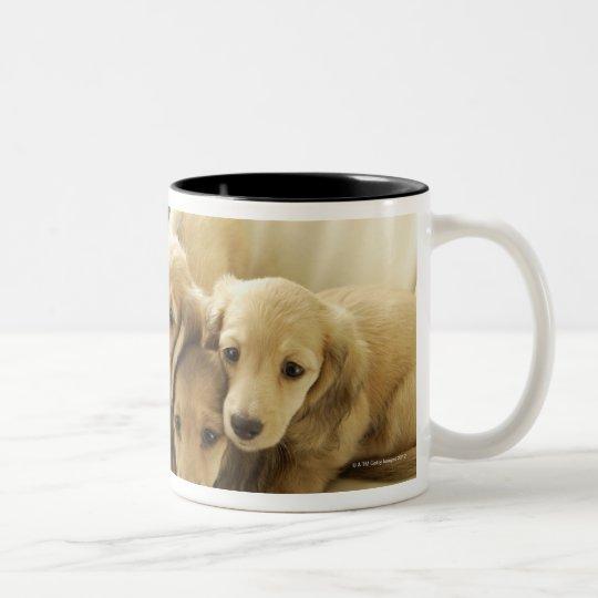 Wiener puppies Two-Tone coffee mug