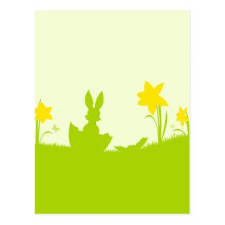 Wiese Osterhase Narzissen Postkarte