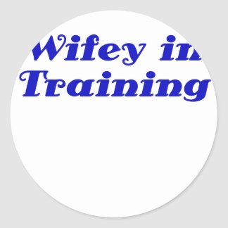 Wifey in Training Stickers