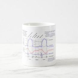 Wiggers Diagram Coffee Mug