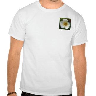wiild subió camiseta