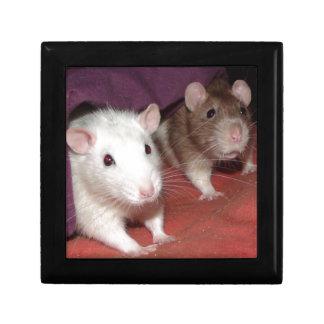 Wiki and Arthur rats Keepsake Box