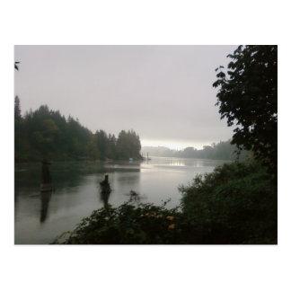 Wilamette River, Oregon Postcard