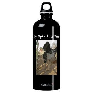 Wilber Spirit Water Bottle