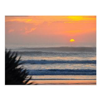 Wilbur by the Sea Palm Sunrise Florida Postcard