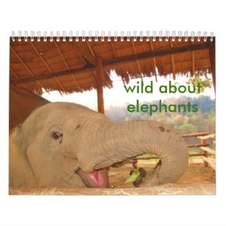 wild about elephants calendar