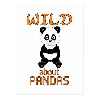 Wild About Pandas Postcard
