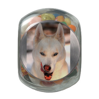 Wild About Treats Pet Snack Jar Glass Candy Jar