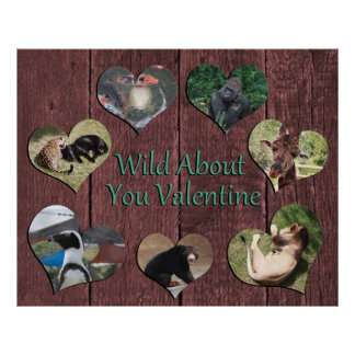 Wild about you poster