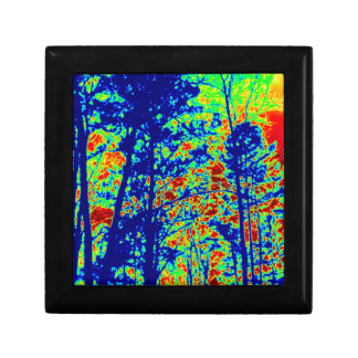 Wild Abstract Landscape Photography Jewelry Box