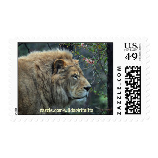 Wild Africa Animal-lovers Big Five Postage