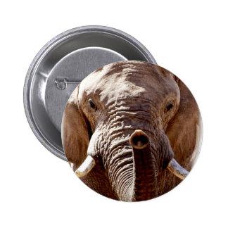 Wild Africa Elephant Head Button