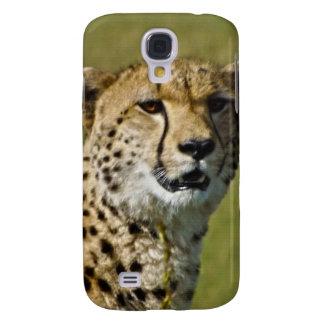 Wild African Cheetah in Savannah Grasses Galaxy S4 Cover
