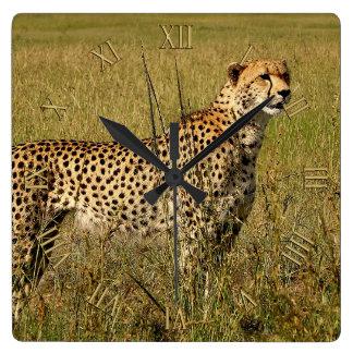 Wild African Cheetah in Savannah Grasses Wallclocks