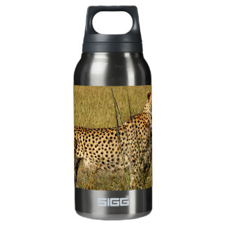 Wild African Cheetah in Savannah Grasses Insulated Water Bottle
