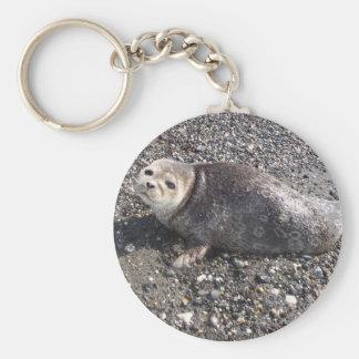 wild alaskan seal keychain